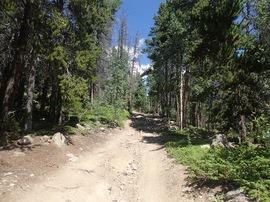 Bill Moore Lake - Waypoint 8: Split