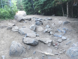 Forest Lake - Waypoint 3: First Rock Pile