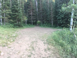Forest Lake - Waypoint 6: Campsite