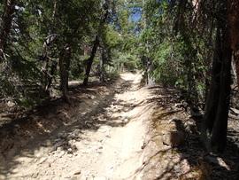 Brown's Pass  - Waypoint 2: Rocky Climb