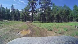 Muddy Rocky Road - Waypoint 3: Flag Tank