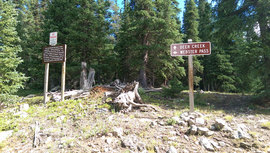 Webster Pass - Waypoint 1: Northern Trailhead