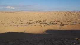 Imperial Sand Dunes Recreation Area - Glamis  - Waypoint 8: Oldsmobile Hill
