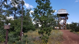 East Pocket Road - Waypoint 33: East Pocket Knob - Lookout Tower