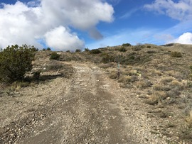 Big Maggie May Trail - Waypoint 3: Fork in Trail