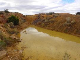 Bullsnake - Waypoint 2: Sludge Pit