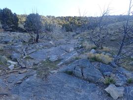 Sidewinder Exit - Waypoint 3: Welcome Hill
