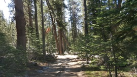 Dusy-Ershim  Trail - Waypoint 17: Mallard Lake