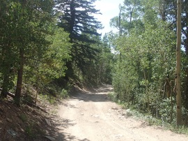 Bill Moore Lake - Waypoint 6: Private Road