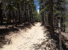 Bill Moore Lake - Waypoint 11: FR 171.2 Red Elephant and Miller Creek Loop Trailhead