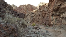 Odessa Canyon - Waypoint 3: 2 1/2 Foot Waterfall