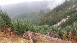 Evans Creek / Trail #519 - Waypoint 4: Stay to the Left/ Mountain and Valley Vistas