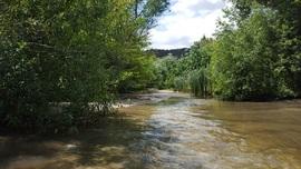 Azusa Canyon SVRA - Waypoint 5: River Crossing