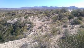 TMRA 9991 - Waypoint 2: Viewpoint