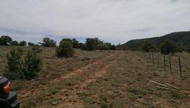 Jacks Canyon Road - Waypoint 9: Fence