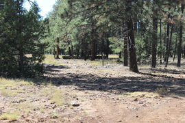 Jacks Canyon Road - Waypoint 2: 801 & 9499G Intersection