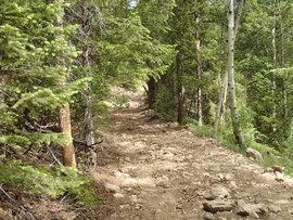 Red Elephant Hill - Waypoint 10:  Begin Rocky Climb