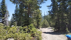 The Rubicon Trail - Waypoint 32: 14N40 - Stay South