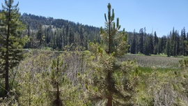 The Rubicon Trail - Waypoint 30: Lily Lake