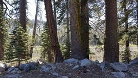 The Rubicon Trail - Waypoint 31: McKinney Lake