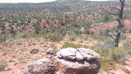 Oak Creek Homestead - Waypoint 7: Big rock