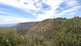Casner Mountain Trail - Waypoint 2: North Gate