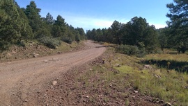 Rocky Sidewinder / 153A - Waypoint 1: Schnebly Hill Road East