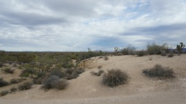 Mojave Road - Waypoint 26: Into Wash