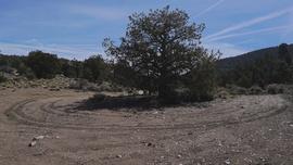 2N01 - Broom Flat - Waypoint 7: Turnout