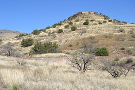 Jackson Cabin/Muleshoe Ranch Road FR #691, Arizona - Waypoint 11:  Pride Ranch Cabin Site & Windmill
