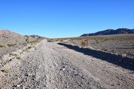 Alamo Road - Waypoint 5: Cow Camp Road