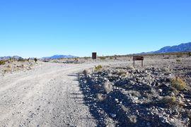 Alamo Road - Waypoint 6: Hidden Forest Road