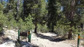 Dusy-Ershim  Trail - Waypoint 1: Starting Point
