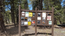 Dusy-Ershim  Trail - Waypoint 3: Voyager Rock Camp Ground