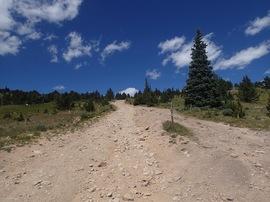 Bill Moore Lake - Waypoint 15: 183.1C