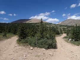 Bill Moore Lake - Waypoint 16: 183.1L
