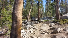 Dusy-Ershim  Trail - Waypoint 8: Thompson Hill Top