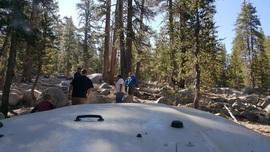 Dusy-Ershim  Trail - Waypoint 18: Lakecamp Rock Garden