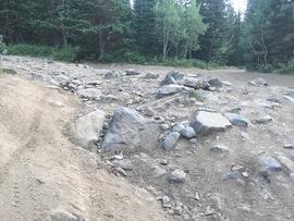 Forest Lake - Waypoint 4: Rock Garden