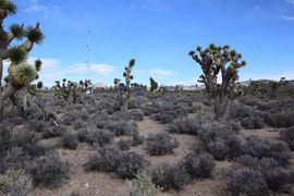 Pine Nut Road - Waypoint 3: Weather Station