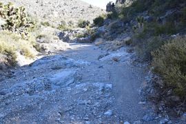 Mormon Well Road  - Waypoint 12: Rocky Obstacle