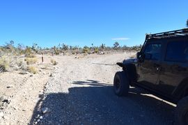 Mormon Well Road  - Waypoint 4: Campground/ Photo Area