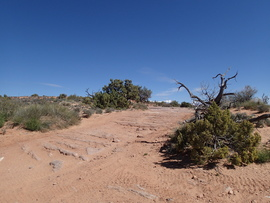 Poison Spider Mesa - Waypoint 13:  Mesa Trailhead
