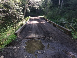 Evans Creek / Trail #102 - Waypoint 2: Bridge