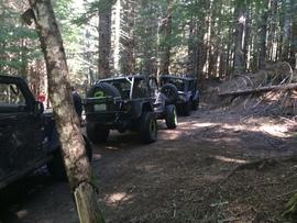 Evans Creek / Trail #102 - Waypoint 4: Trail Intersection