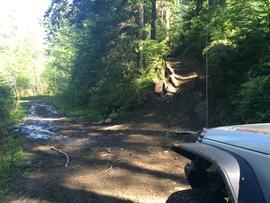 Evans Creek / Trail #102 - Waypoint 7: Trail Intersection