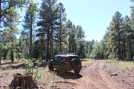 Jacks Canyon Road - Waypoint 1: 801 & 9460T Intersection