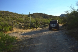 Millsite Canyon Trail Arizona - Waypoint 8: STAY RIGHT ON FR1900