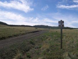 Aspen Ridge - Waypoint 4: Intersection  FS Road 185C