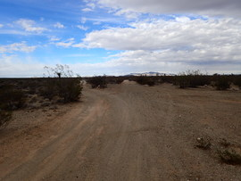 Mojave Road - Waypoint 23: Straight